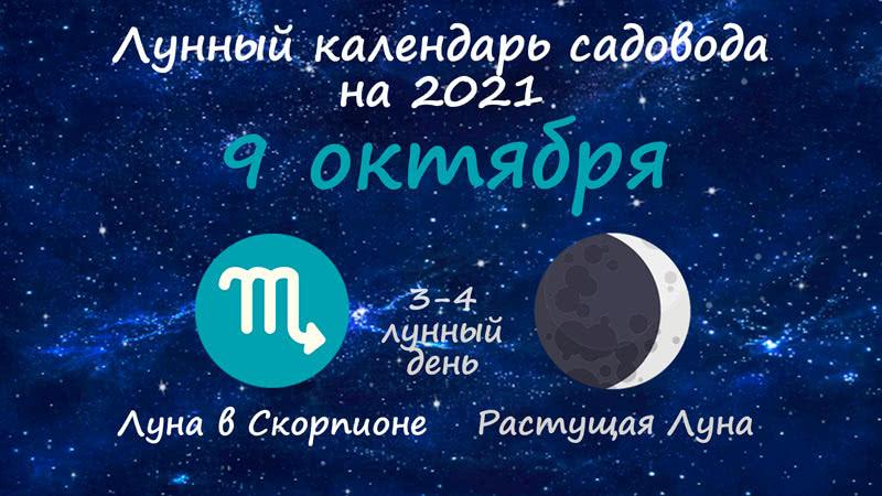 Лунный календарь садовода-огородника на 9 октября 2021 года
