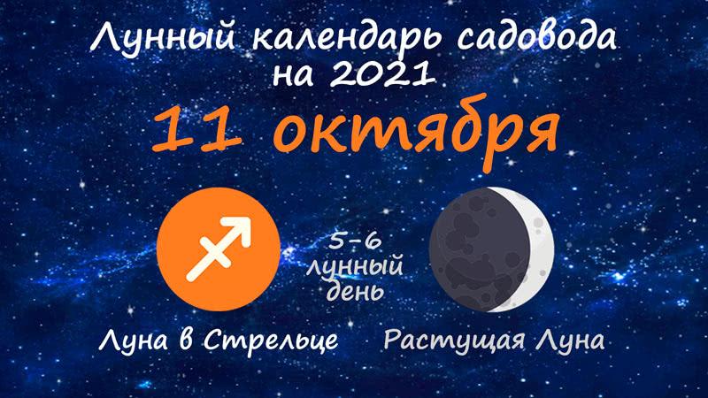 Лунный календарь садовода-огородника на 11 октября 2021 года