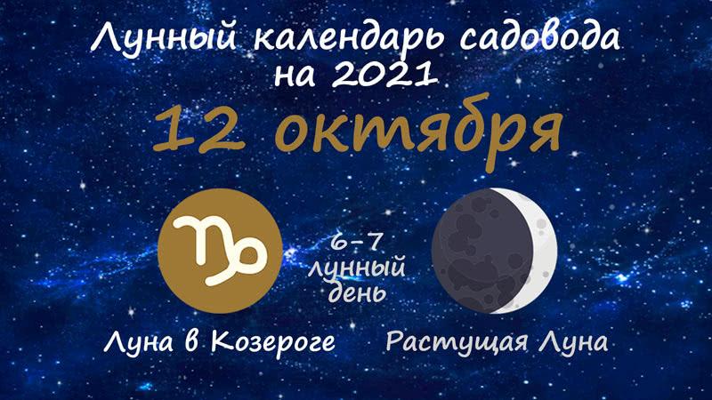 Лунный календарь садовода-огородника на 12 октября 2021 года