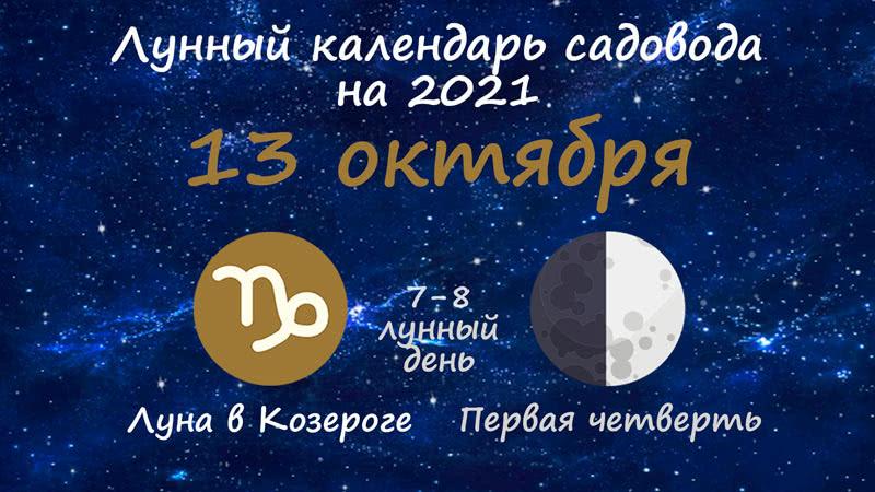 Лунный календарь садовода-огородника на 13 октября 2021 года