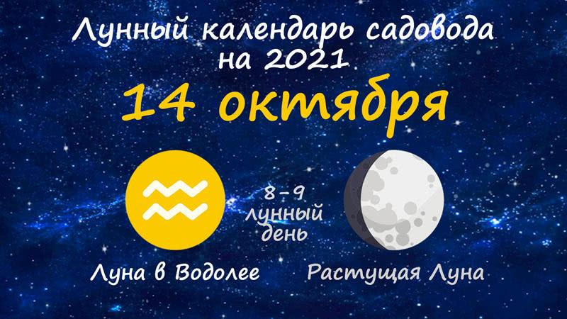 Лунный календарь садовода-огородника на 14 октября 2021 года