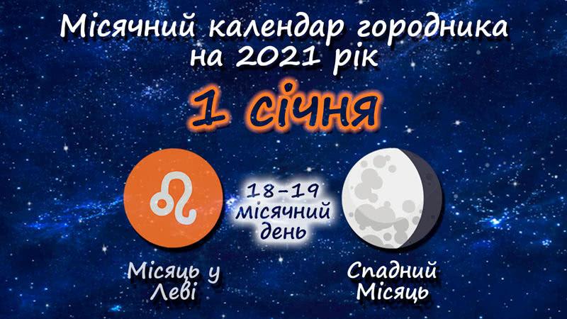 Місячний календар садівника-городника на 1 січня 2021 року