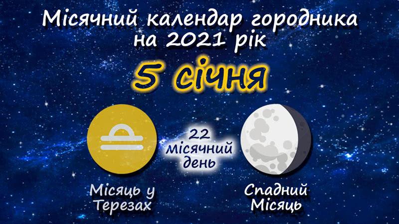 Місячний календар садівника-городника на 5 січня 2021 року