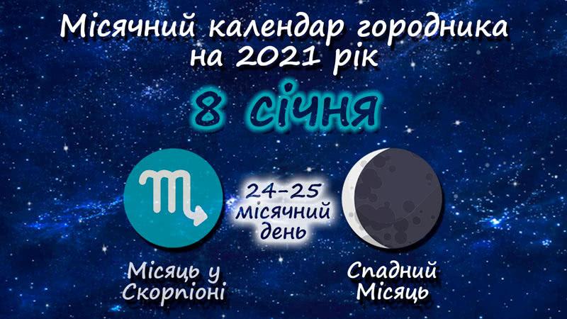 Місячний календар садівника-городника на 8 січня 2021 року
