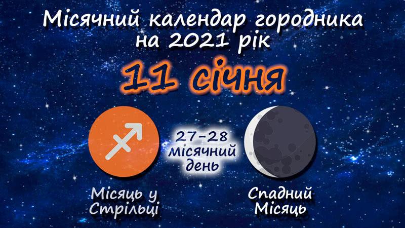Місячний календар садівника-городника на 11 січня 2021 року