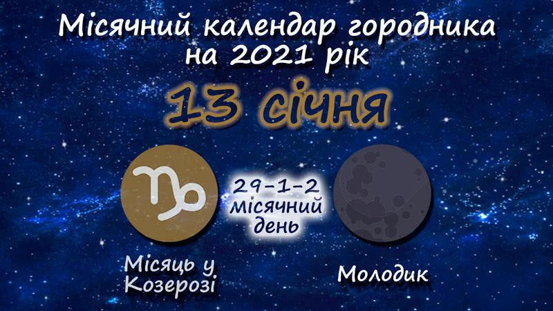 Місячний календар садівника-городника на 13 січня 2021 року