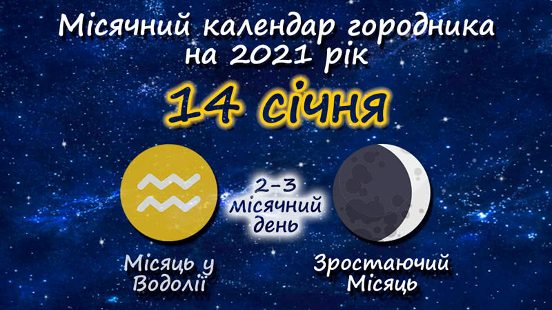 Місячний календар садівника-городника на 14 січня 2021 року