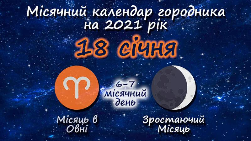 Місячний календар садівника-городника на 18 січня 2021 року