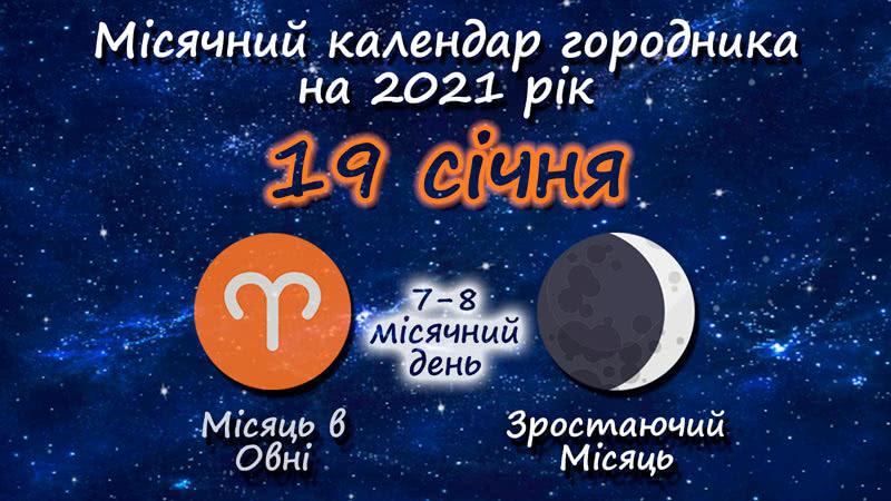 Місячний календар садівника-городника на 19 січня 2021 року
