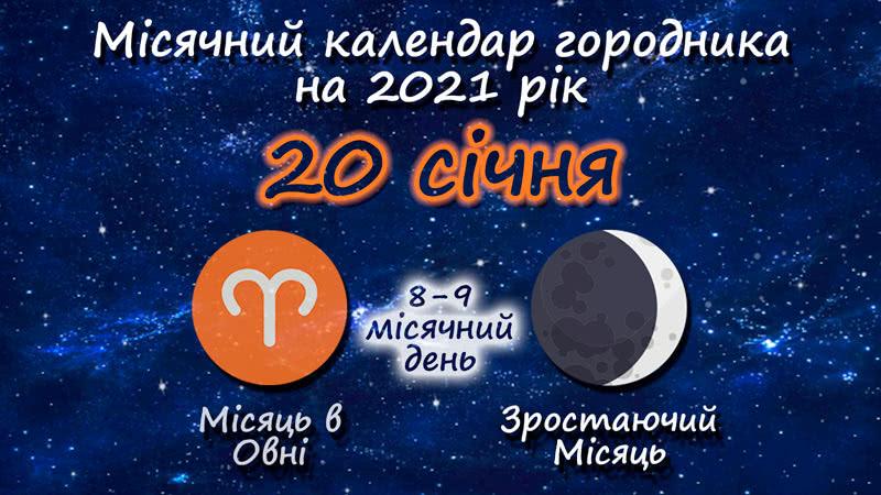 Місячний календар садівника-городника на 20 січня 2021 року