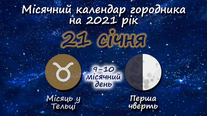 Місячний календар садівника-городника на 21 січня 2021 року