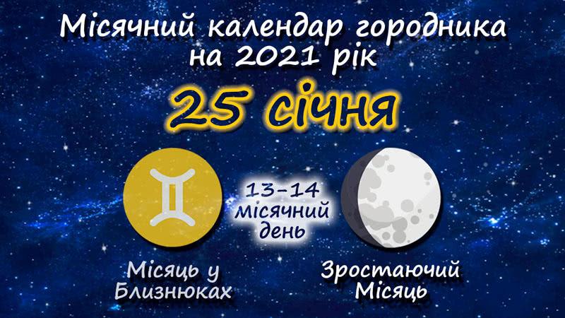 Місячний календар садівника-городника на 25 січня 2021 року