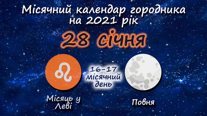Місячний календар садівника-городника на 28 січня 2021 року