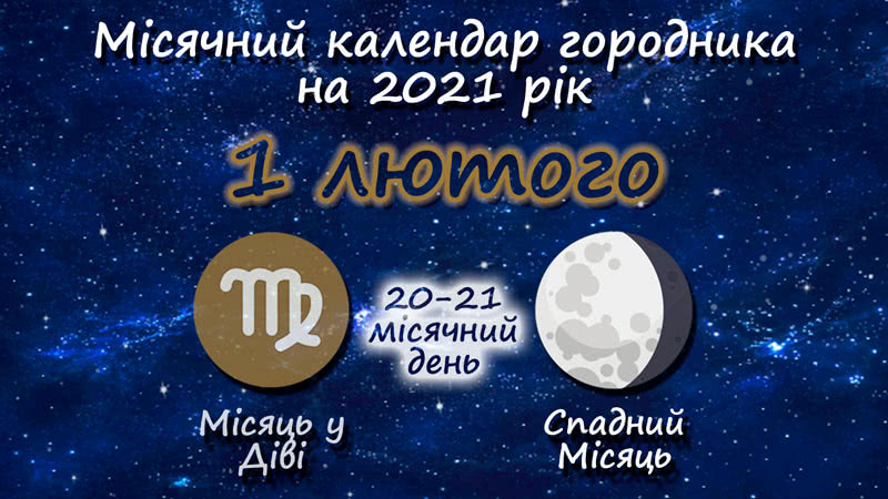 Місячний календар садівника-городника на 1 лютого 2021 року