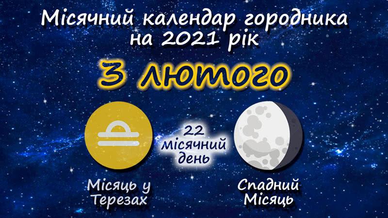 Місячний календар садівника-городника на 3 лютого 2021 року