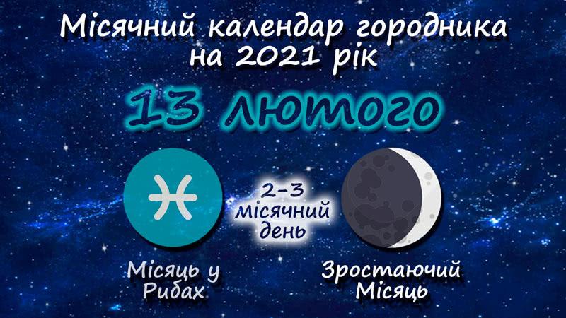 Місячний календар садівника-городника на 13 лютого 2021 року