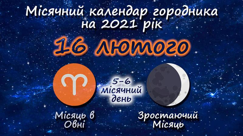 Місячний календар садівника-городника на 16 лютого 2021 року