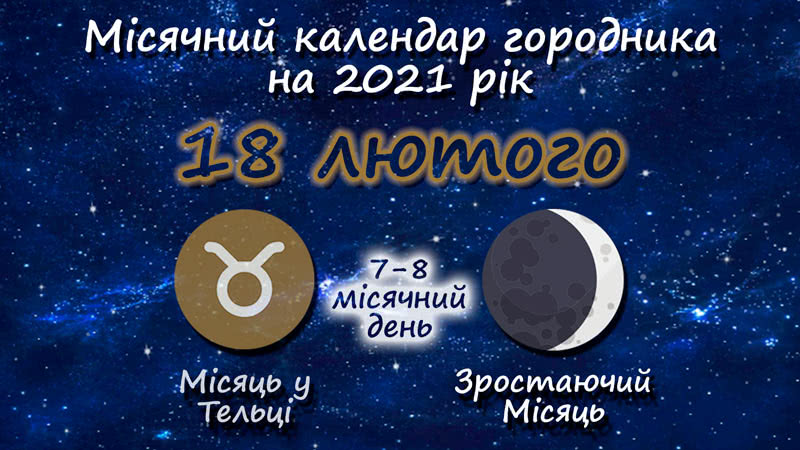 Місячний календар садівника-городника на 18 лютого 2021 року