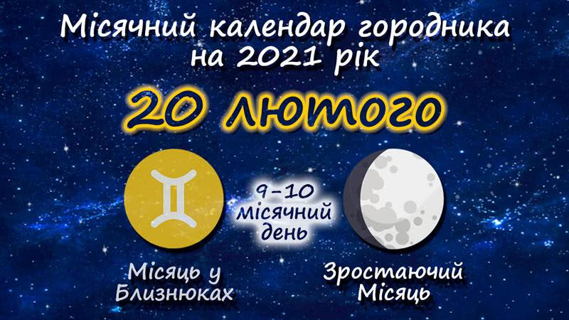 Місячний календар садівника-городника на 20 лютого 2021 року