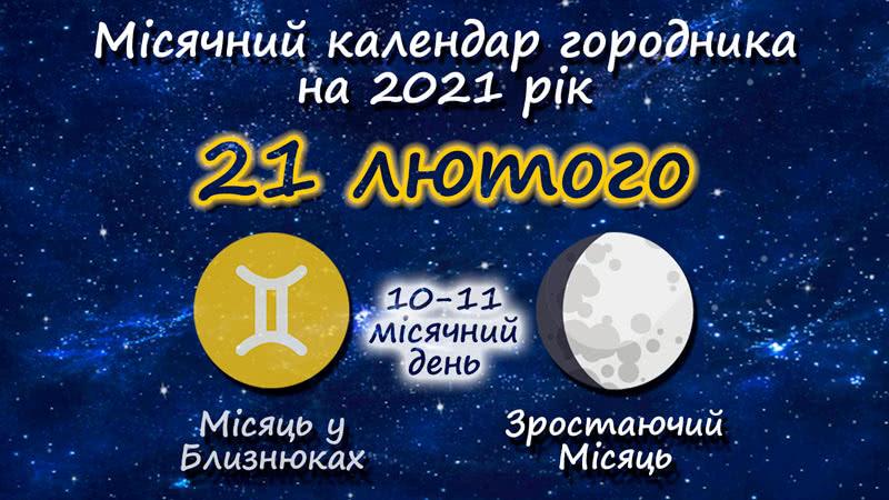 Місячний календар садівника-городника на 21 лютого 2021 року