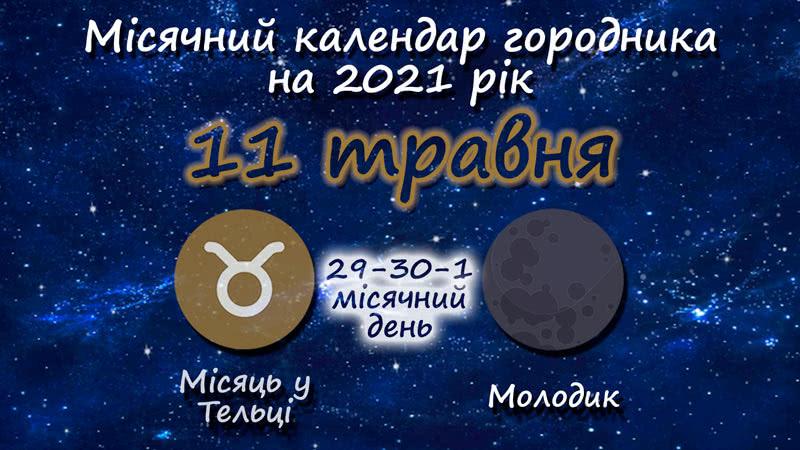 Місячний календар садівника-городника на 11 травня 2021 року