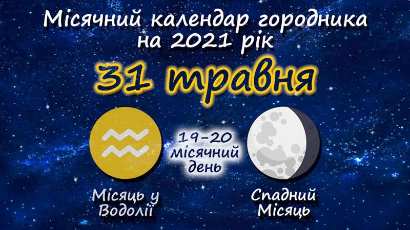 Місячний календар садівника-городника на 31 травня 2021 року