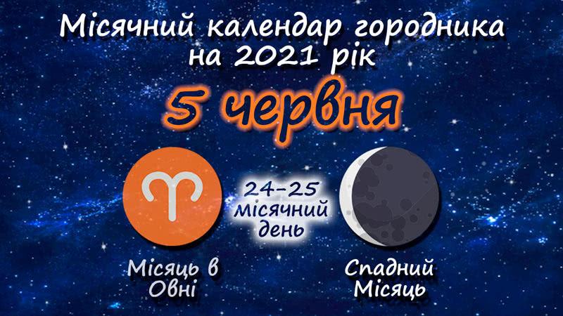 Місячний календар садівника-городника на 5 червня 2021 року