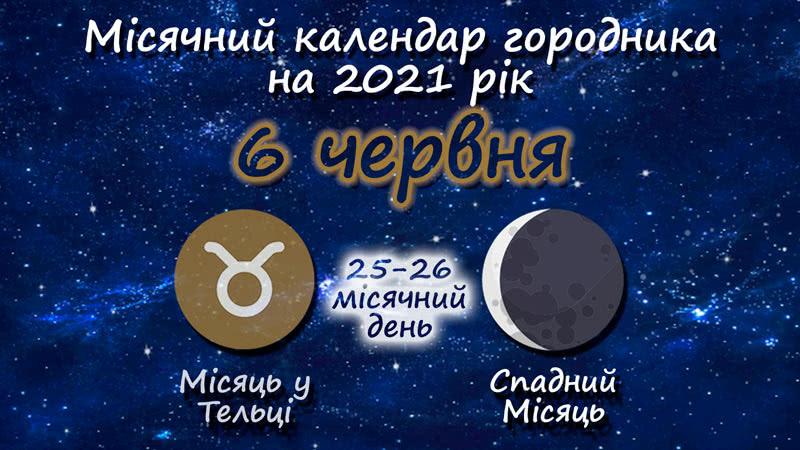 Місячний календар садівника-городника на 6 червня 2021 року