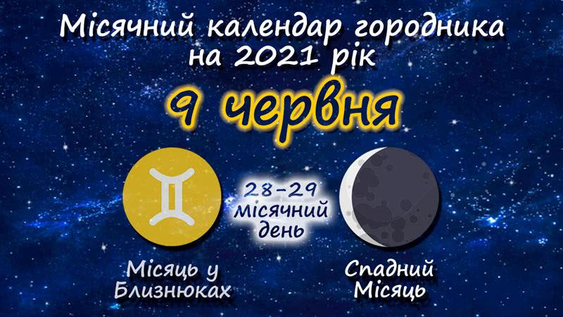 Місячний календар садівника-городника на 9 червня 2021 року