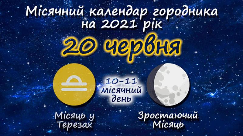 Місячний календар садівника-городника на 20 червня 2021 року