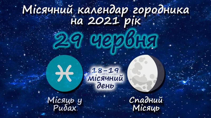Місячний календар садівника-городника на 29 червня 2021 року