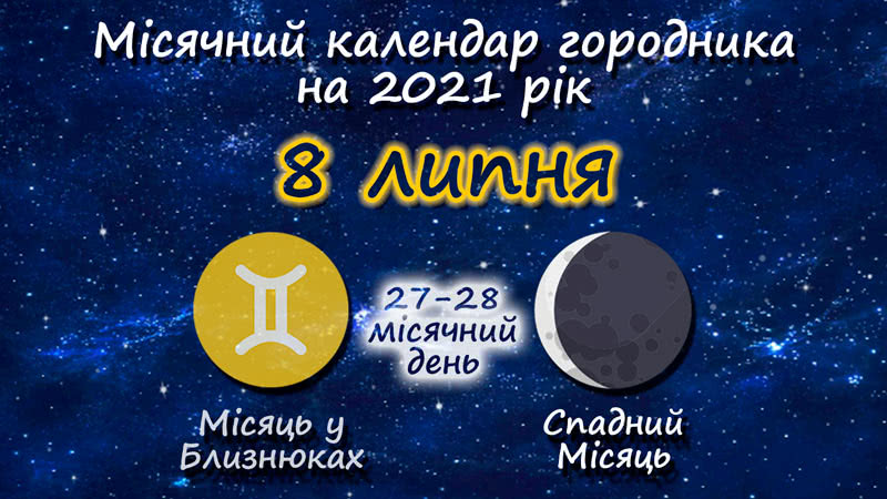 Місячний календар садівника-городника на 8 липня 2021 року