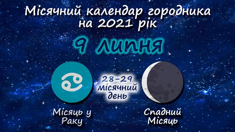 Місячний календар садівника-городника на 9 липня 2021 року