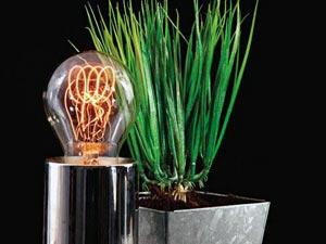 Искусственное освещение растений