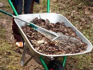 Сировина для листяної землі