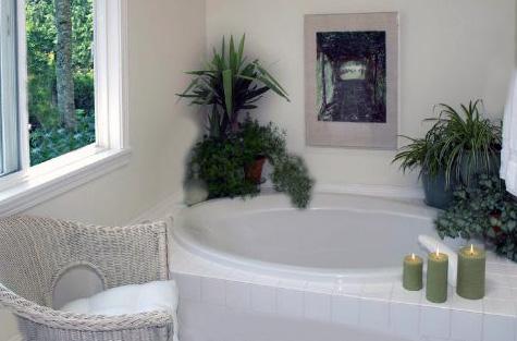 Как размещать цветы в ванной