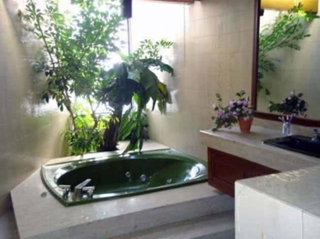 Размещение цветов в ванной комнате