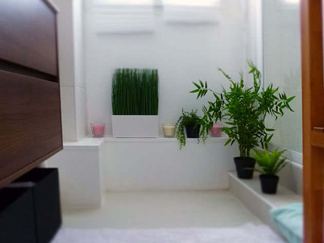 Уход за цветами в ванной комнате