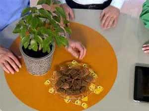 Удобрение растений чайной гущей