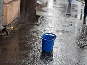 Дождевая вода для полива растений