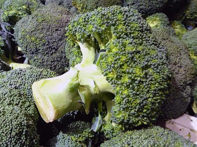 Рослина броколі після збору врожаю