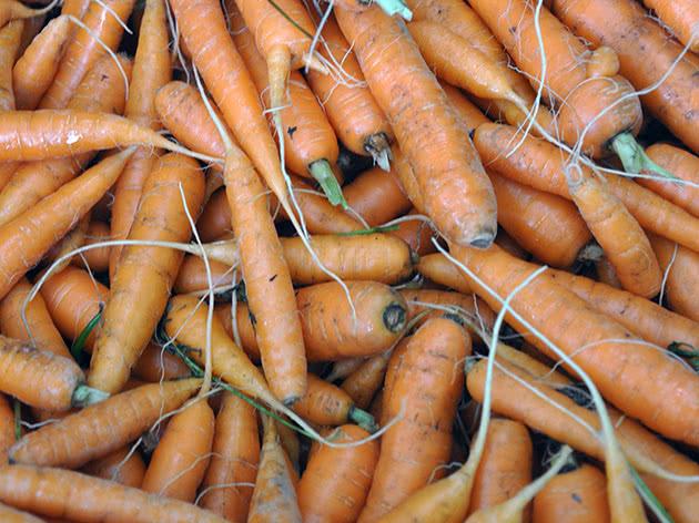 Зберігання моркви після збору врожаю