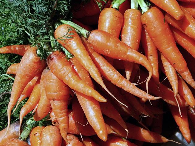 Посадка та догляд за морквою на ділянці