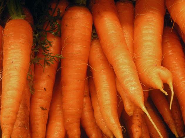 Як виростити моркву з насіння