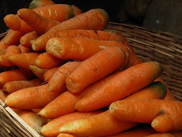 Рослина морква