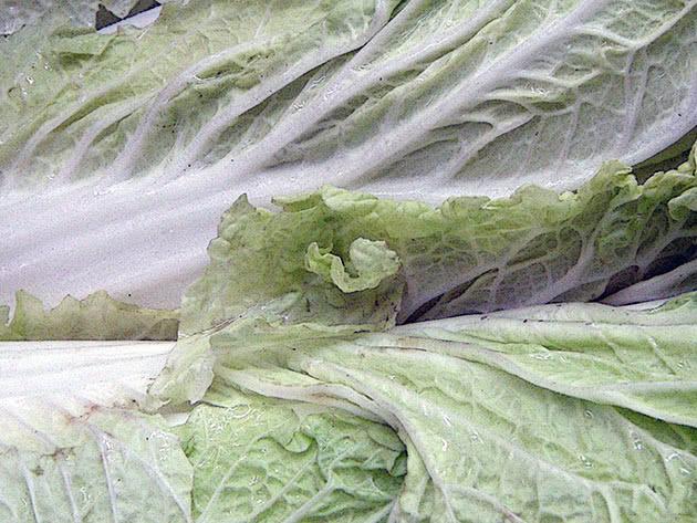 Листя пекінської капусти