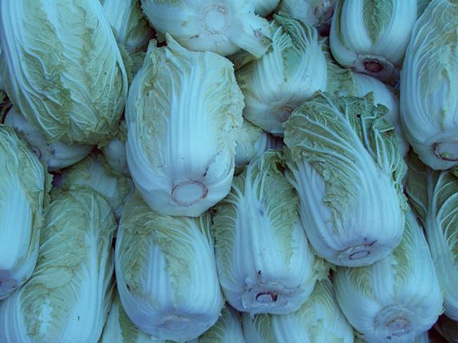 Як зберігати пекінську капусту