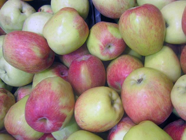 Зберігання яблук узимку