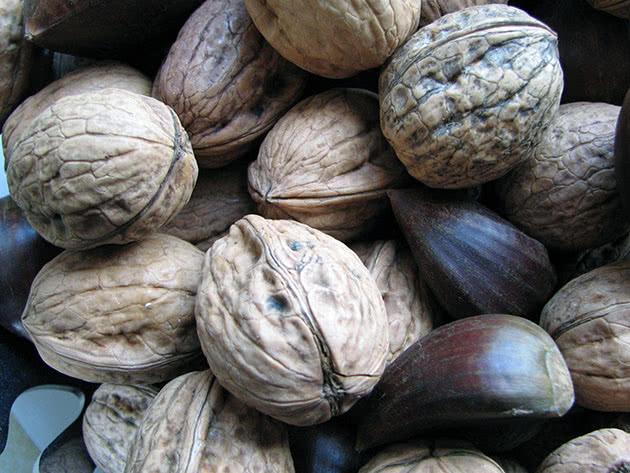 Хранение орехов зимой