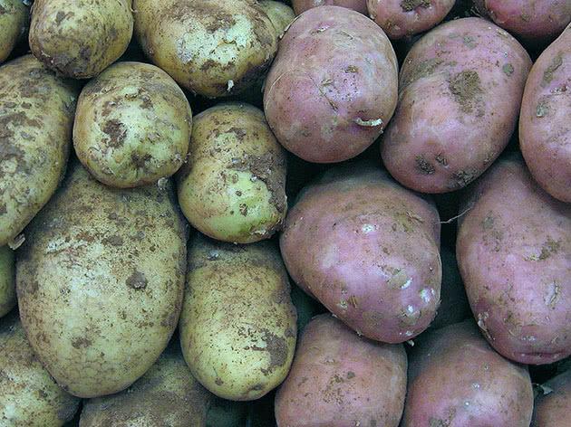 Белая и розовая картошка
